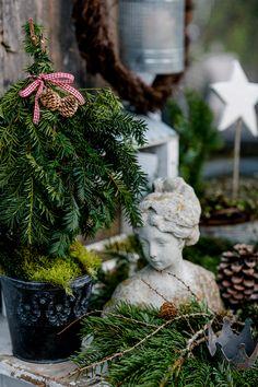 Christmas magic in the November garden • Pomponetti French Christmas, Little Christmas, Christmas Holidays, Christmas Wreaths, Christmas Crafts, Xmas, Christmas Garden, Christmas Greenery, Winter Holiday