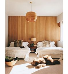 Wood wall paneling is one design element that has made an incredible comeback in today's modern interiors. Modified wood is a beautiful material and one that can be readily adapted for interior use with stunning results. Home, Home Bedroom, Aspen House, Kids Rooms Shared, Interior, Shared Bedroom, Wood Panel Walls, House Interior, Room