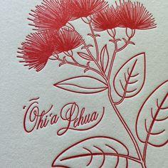 'Ōhi'a Lehua prints have arrived. Hand letterpressed on a 150 year old Chandler and Price printer by Aloha Letterpress on the island of Maui. Photo courtesy of Linda Coleon. Hawaiian Art, Hawaiian Quilts, Hawaiian Tattoo, Hawaiianisches Tattoo, Fern Tattoo, Native Drawings, Hawaiian Pattern, New Zealand Art, Leaf Drawing