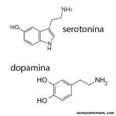 #serotonin and #dopamine