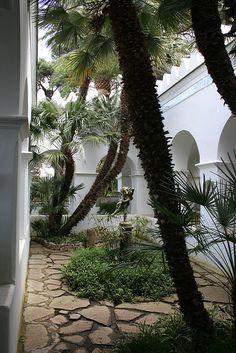 Axel Munthe house and #garden #capri #italy