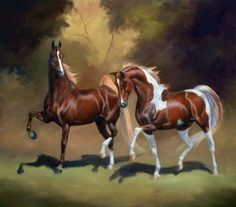 Majestic Horse, Beautiful Horses, Animals Beautiful, Horse Wallpaper, American Saddlebred, Horse Artwork, American Paint, Horse Face, Horse Drawings