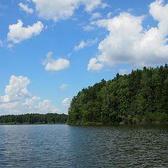 Let's go somewhere - summer roadtrip - Trebonsko lake, Czech Republic [mygipsysoul]