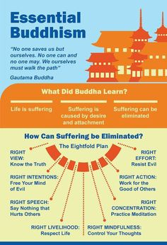 """zengardenamaozn: """"Amazing Buddhism infographic packed with mind-blowing facts, little-known history, surprising statistics"""" {margin: font: 'Helvetica Neue'; Buddhist Wisdom, Buddhist Teachings, Buddhist Quotes, Buddha Buddhism, Beliefs Of Buddhism, Buddhism For Beginners, Buddha Thoughts, Buddhist Practices, Buddhist Philosophy"""
