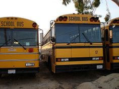 1989 crown school bus - Google Search