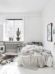 Neutrals & Soft Grays