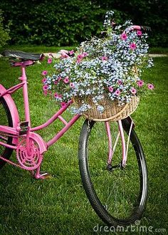 Super old bike basket vintage bicycles ideas
