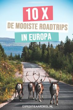 Road trip Europe: 10 original ideas - What is the best road trip you can take in Europe? View here a list of the 10 most beautiful round - Road Trip Europe, My Road Trip, Europe Travel Guide, Places To Travel, Places To Go, Travel Destinations, Saint Tropez, Bilbao, Camper