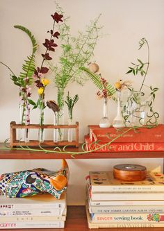 Test tube flower vases - an inventive way to repurpose a test tube rack! Ask for old ones from lab. Indoor Plants, Indoor Garden, Scandinavian Interior, Flower Vases, Spring Time, Floral Arrangements, Floral Design, Sweet Home, Interior Design