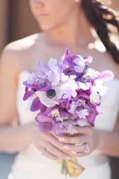 Gallery & Inspiration | Tag - Orchid | Picture - 275954