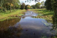 Voorste stroom Oisterwijk