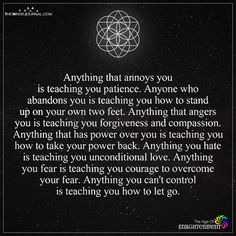 Anything That Annoys You Is Teaching You Patience