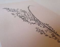 Handmade nature prints and books by Stef Mitchell by fieldandhedgerow Mono Print, Plant Growth, Nature Prints, Grass, Minimal, Delicate, Ink, Free Shipping, Floral