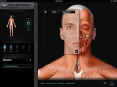 "QA International (QAI) have announced its Virtual Human Body App, available on iPad since last December, is now a universal app, optimized for viewing on iPhone and iPod touch, including support for the new 4"" Retina display on iPhone 5."