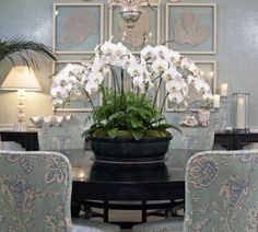 Orchids in a Chinese footbath is an elegant choice