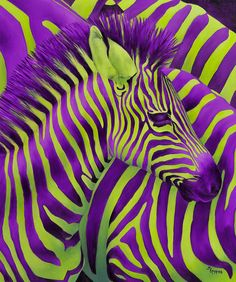Have a Groovy Friday! Purple and Green striped Zebra Purple Love, All Things Purple, Shades Of Purple, Green And Purple, Zebra Kunst, Zebra Art, Zebra Painting, Canvas Art, Canvas Prints