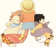 Baby's // Law & Kid & Luffy