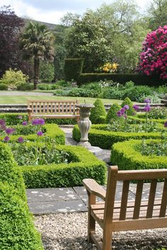 Shabby Soul:Sunday garden - Topiary