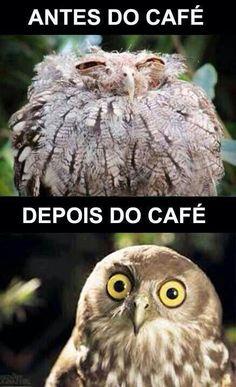 Café, sempre animando tudo rsrsrs