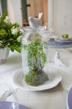 Take this DIY tip from Lenox Entertaining Expert Michael Tavano: Make a Bird-Topped Cloche for Spring by turning over this hurricane and topping it with a sweet bird salt shaker. Lenox French Perle Dinnerware, Salt & Pepper, Lenox Garden Crystal Hurricane. #michaeltavano