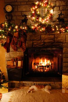 The animation isn't very good in this fireplace GIF, but the lit Christmas decorations and the lazy cat sprawling in front of the warmth are rally charming and homey.