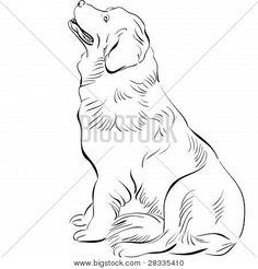 black and white sketch of the dog Newfoundland hound breed sitting Poster Black And White Sketches, Black And White Illustration, Hound Breeds, Newfoundland, Coloring Pages, Drawings, Artwork, Poster, Products