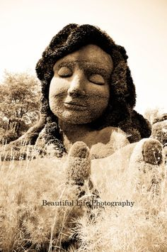 Mother Nature by BLPhotography on Etsy, $21.00