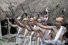#tari perang #traditionaldance #NTT