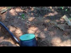 Grey Water is water from the house which is normally washed down the drain (such as laundry water), but is actually good for trees. This video is part of a s. Grey Water System, Water Systems, Tv Videos, Laundry, Trees, Landscape, Diy, House, Laundry Room