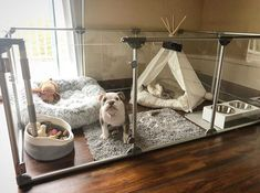 dog rooms / dog rooms + dog rooms in house + dog rooms under the stairs + dog rooms ideas + dog rooms in house bedrooms + dog rooms in house small spaces + dog rooms in bedroom + dog rooms in garage Animal Room, Dog Room Decor, Home Decor, Pet Decor, Dog Enclosures, Dog Bedroom, Bunny Cages, Rabbit Cages, Puppy Room