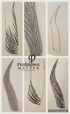 Pin by Raquel Lopez Parejo on Microblading in 2020 Mircoblading Eyebrows, Permanent Makeup Eyebrows, How To Draw Eyebrows, Threading Eyebrows, Eyebrow Makeup, Makeup Kit, Eyelashes, Microblading Eyebrows Training, Make Up Guide
