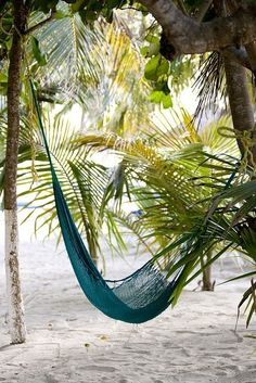 Tropical Island Adventures :: Escape to a Beach Paradise :: Soak in the Sun :: Palms + Ocean Air :: Discover more Island Life Inspiration Puerto Rico, Paradis Tropical, I Love The Beach, Tropical Paradise, Paradise Garden, Backyard Paradise, Tropical Vibes, Beach Bum, Hammock Beach