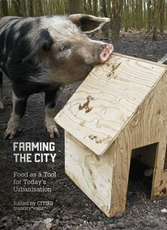 Farming the City: Food as a Tool for Today's Urbanisation, published and edited by Cities Magazine and Trancity. #Urban #Farming #Book