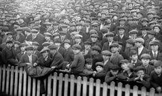 football crowds