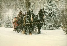 One of favorite winter destinations...Nestle Nook Farm in NH. The kids love taking the horse & sleigh rides in the snow.