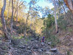 Whiskey Creek Circuit - Lerderderg State Park - Victoria Great Places, Places To See, State Parks, Circuit, Whiskey, Bones, Hiking, Victoria, Australia