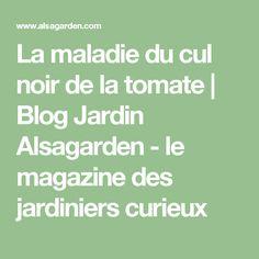 La maladie du cul noir de la tomate | Blog Jardin Alsagarden - le magazine des jardiniers curieux