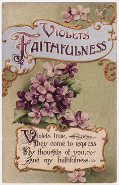 Flower postcard ~ Violets ~ Faithfulness ~ Language of Flowers Decoupage Vintage, Vintage Paper, Vintage Labels, Vintage Ephemera, Vintage Signs, Vintage Postcards, Vintage Images, Stencil, Munier