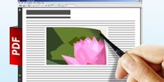 Want to extract an image from a document, but don't know how? Here are solutions for Word, PowerPoint and PDFs. Inserting an image into a document is a piece of cake — but extracting it isn't quite so easy. A cropped screenshot might do the job in a pinch, but you run the risk of…