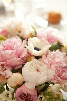 #bloemen #pioenrozen #dechibeach