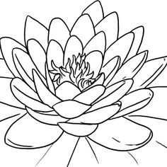 Lotus flower drawing how to draw a water lily step 9 handmade blooming lotus flower coloring pagesg mightylinksfo