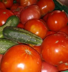 Ya os lo había dicho... Desmadrado!!!  También tenemos berenjenas y fresas pepinos y judías verdes . . #tomates #molones #pepinos  #huerteando #vegetables #slowfood #365happydays #mismargaritadas