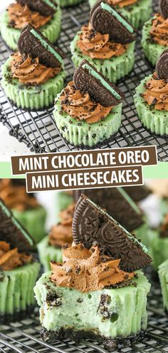 These easy Mint Chocolate Oreo Mini Cheesecakes are so delicious with little chunks of mint Oreos, a chocolate crust and just the right amount of mint flavor! It's sure to become your favorite mini cheesecake recipe! recipes for two recipes fry recipes Chocolate Oreo Cheesecake Recipe, Easy Mini Cheesecake Recipe, Oreo Cheesecake Recipes, Mint Cheesecake, Chocolate Cookie Recipes, Easy Cookie Recipes, Chocolate Desserts, Oreo Recipe, Köstliche Desserts