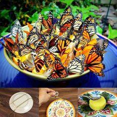 http://www.ehow.com/way_5484767_homemade-butterfly-feeder.html