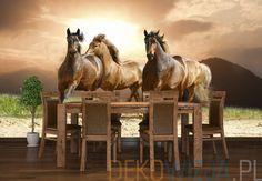 Fototapeta z Końmi w galopie