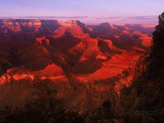 Grand Canyon National Park, AZ Reproduction photographique par Gary Conner sur AllPosters.fr