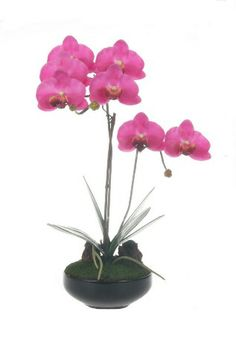 A Loja do Gato Preto | Vaso Redondo Orquídea Rosa @ Maceta Redonda Orquídea Rosa #alojadogatopreto