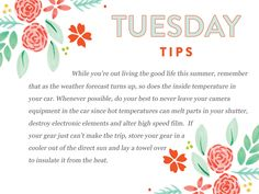 A definite must read Tuesday Tip for hot Summer days!  http://www.everythingbloom.com/tuesday-tips-164-%C2%B7-summer-lovin