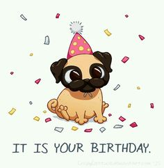 Most Cutest Birthday Card With Name Edit photo on best online generator and send printable happy birthday wishes cards with name editing options. Happy Birthday Pug, Happy Birthday Wishes Cards, Happy Birthday Celebration, Happy Birthday Images, Dog Birthday, Birthday Greetings, It's Your Birthday, Birthday Pictures, Funny Birthday