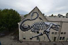 Street  art,  ROA IN CHRISTCHURCH (NZ) Street Artists, Cool Art, Graffiti, Museum, Art Art, Logo, Random, Photos, New Zealand